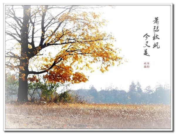 DSCN5927_副本.jpg1.jpg
