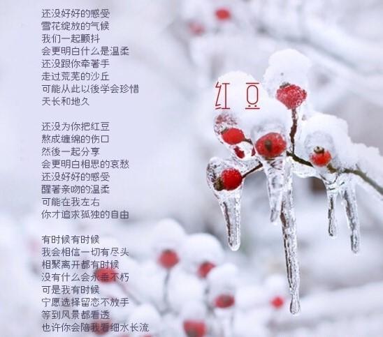 xin-2415.jpg