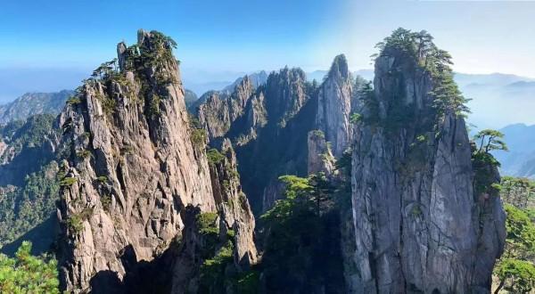 WeChat Image_20210120024242.jpg