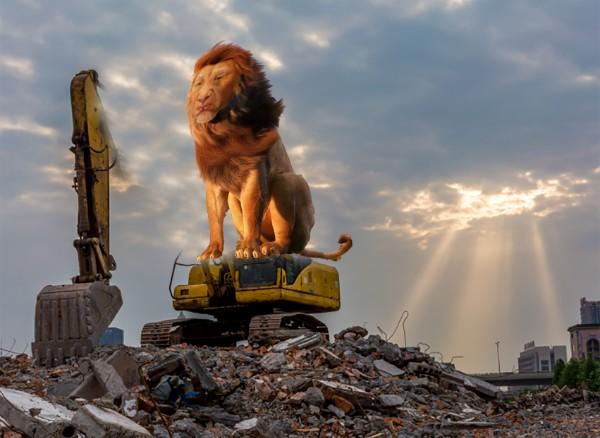 东方之狮.jpg