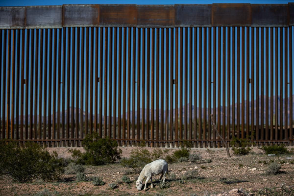 边境墙012.jpg