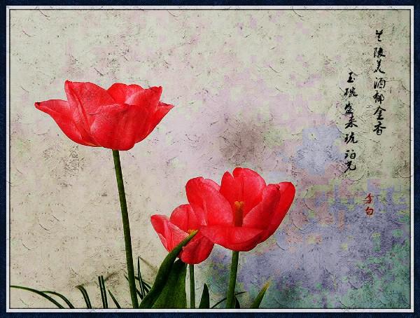 DSCN6118_副本_meitu_1_meitu_13.jpg