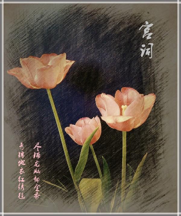 DSCN6134_副本_meitu_11.jpg