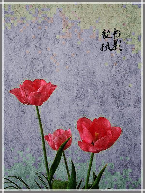 DSCN6142_副本_meitu_14.jpg