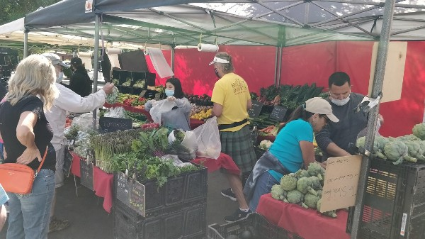 2-1 蔬菜.jpg