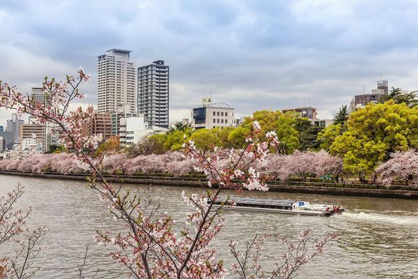 Osaka_1_edit.jpg