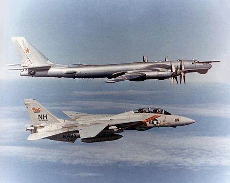 450px-F-14_Tomcat_VF-114_escorting_TU-95_Bear.jpg