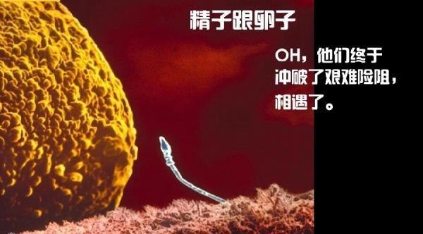 new born-3.jpg