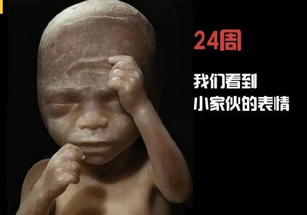 new born-5.jpg