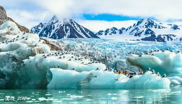 Berman3-glacier2.jpg
