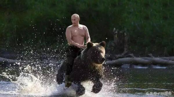 07 普京骑熊.jpeg