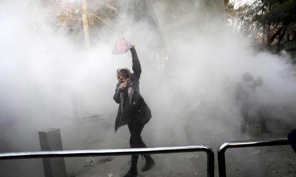 Iran Rose.jpg