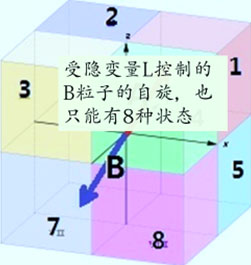 贝尔9.jpg