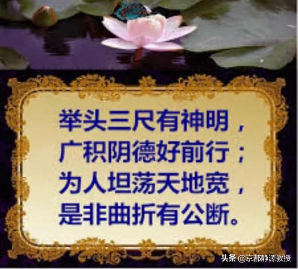 201dfbd7839f4e089619d79516347990_noop_750x679.jpeg