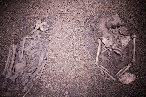 Bones_of_the_sacrificed_-_Nanjing_Museum.jpg
