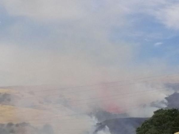 山火3.jpg