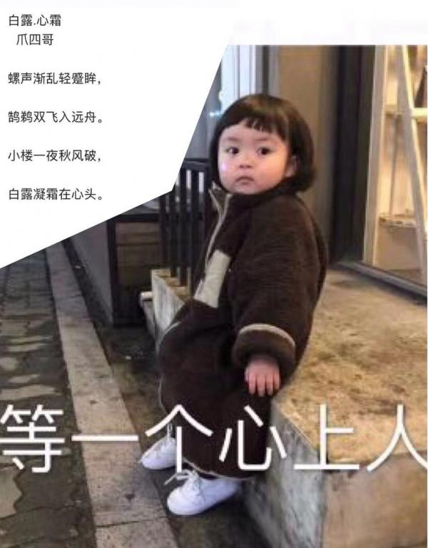 白露-4.jpg