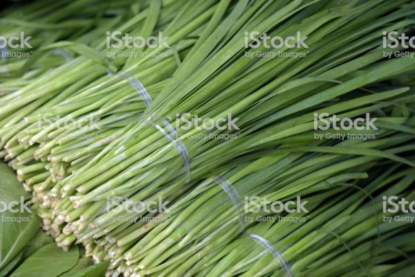 A12韭菜.jpg