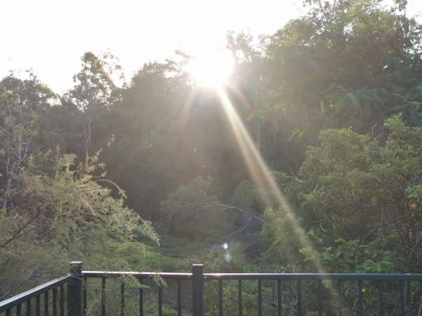 201191231最后一束阳光.jpg