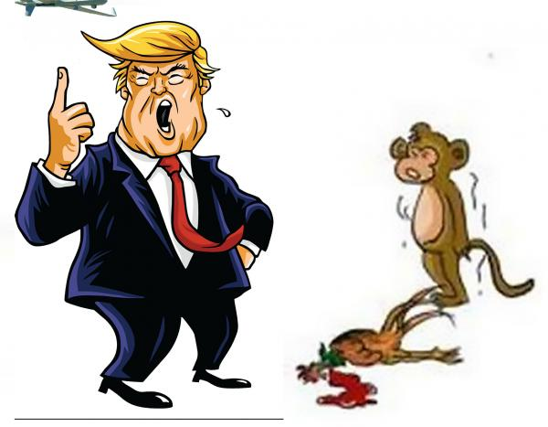 Play with the monkey.jpg