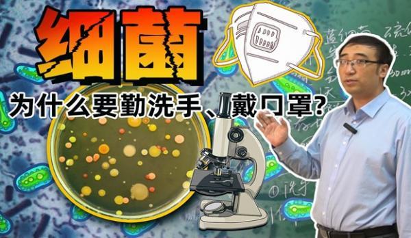 HelicobacterPylori_07.jpg