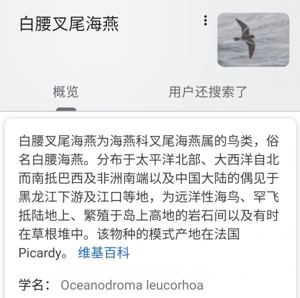 Screenshot_2020-02-17-20-24-40.png