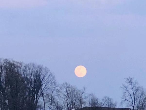 blood moon-14.jpg