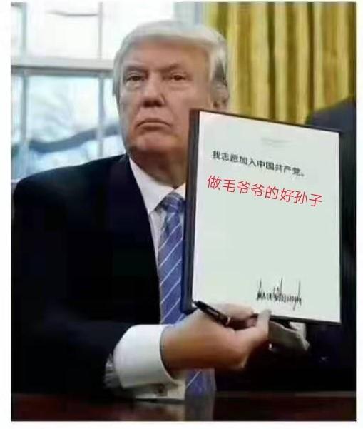xin-1378.jpg