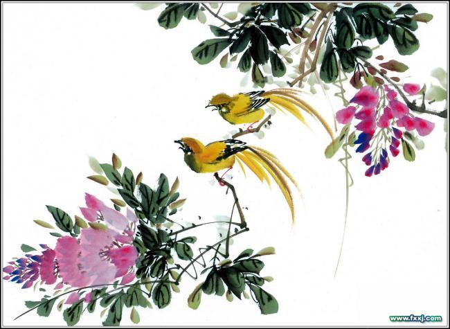 райские птицы в феншуй